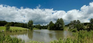 Picture of the fidhing lake at Highwoods Country Park